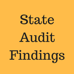 State Audit Findings